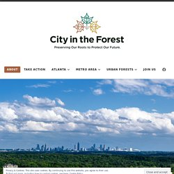 Atlanta - City in the Forest: