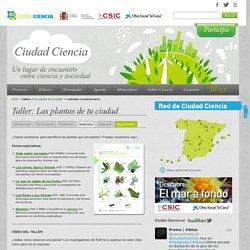 Ciudad Ciencia