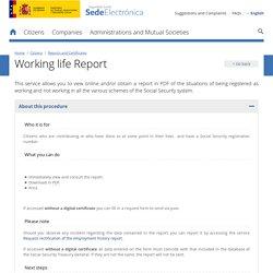 Informe vida laboral