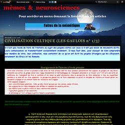 CIVILISATION CELTIQUE (LES GAULOIS n° 1/3)