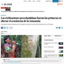 Las civilizaciones precolombinas fueron las primeras en alterar el ecosistema de la Amazonia