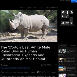 "The World's Last White Male Rhino Dies as Human ""Civilization"" Expands and Outbreeds Animal Habitat"