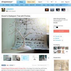 Darwin's Cladogram Tree with Finches by joabaldwin on Shapeways