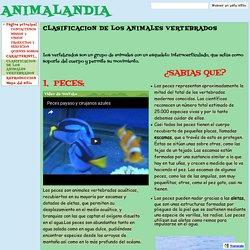 CLASIFICACION DE LOS ANIMALES VERTEBRADOS - ANIMALANDIA