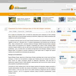 ACTU ENVIRONNEMENT 03/01/13 Classement du frelon asiatique dans la liste des dangers sanitaires