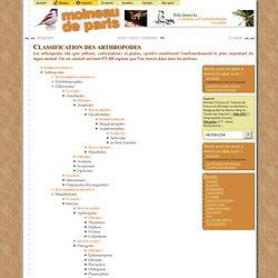 Classification - Dossiers - Moineau de Paris