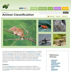 Animal Classification - Reference - A-Z Animals - Animal Facts, Information, Pictures, Videos, Resources and Links