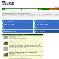 Waipu Donkeys For Sale Northland Classifieds Ads, Waipu Donkeys For Sale Online Post Free Classified Ads