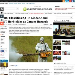 WHO Classifies 2,4-D, Lindane and DDT Herbicides as Cancer Hazards