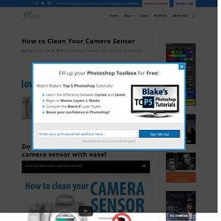 How to Clean Your Camera Sensor - f64 Academy