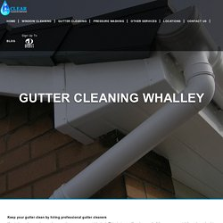 Gutter Cleaning Services Whalley