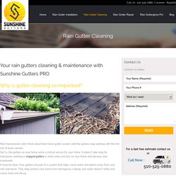 Alternative To Gutter Cleaning Service in California