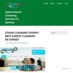 Steam Cleaning Company in Sydney: Best Carpet Cleaners in Sydney