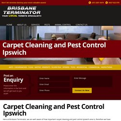 Carpet Cleaning And Pest Control Ipswich