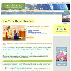 Non-toxic Home Cleaning & Care: Natural, Green, Eco-Friendly Solutions