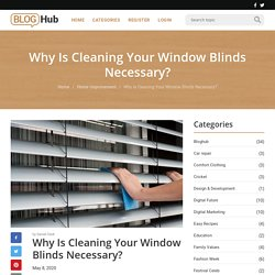 Why Is Cleaning Your Window Blinds Necessary?