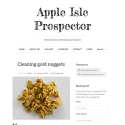 Cleaning gold nuggets - Apple Isle Prospector