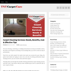 Carpet Cleaning Services: Needs & Benefits