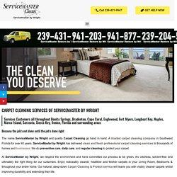 Carpet Cleaning Fort Myers, Cape Coral, Bonita Springs, Sarasota