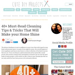 40+ Must-Read Cleaning Tips & Tricks That Will Make your Home Shine – Cute DIY Projects