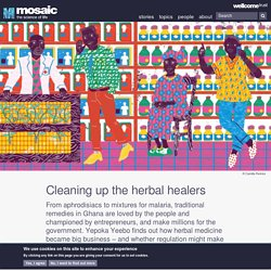 Cleaning up the herbal healers