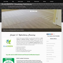 Our professional carpet cleaning service use high powered tools to make your carpet clean.