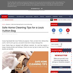 Safe Home Cleaning Tips for a Louis Vuitton Bag