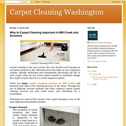 Carpet Cleaning Washington: Why Is Carpet Cleaning Important in Mill Creek and Kenmore