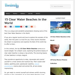 Top 15 Clear Water Beaches in the World - Wondersify