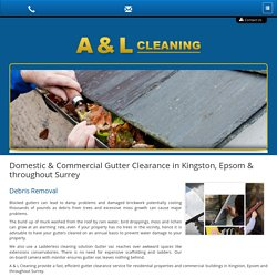 Driveway Cleaning Kingston