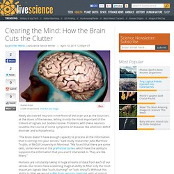 Clearing the Mind: How the Brain Cuts the Clutter