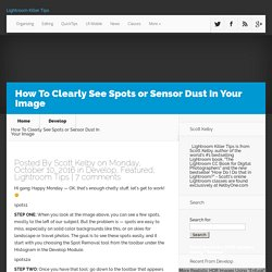 How To Clearly See Spots or Sensor Dust In Your Image