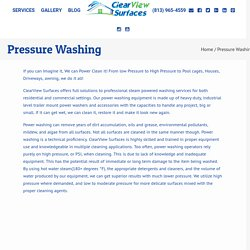 Tampa Pressure Washing