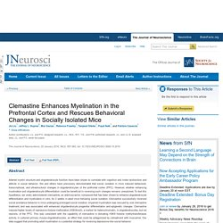 Clemastine Enhances Myelination in the Prefrontal Cortex and Rescues Behavioral Changes in Socially Isolated Mice