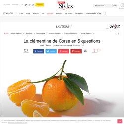 La clémentine de Corse en 5 questions - L'Express Styles