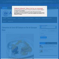Clémentine De Corse IGP, Sabayon Au Floc De Gascogne Blanc
