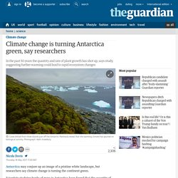Climate change is turning Antarctica green, say researchers