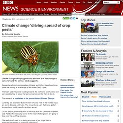 Climate change 'driving spread of crop pests'