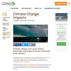 Climate Change Impact on Storms