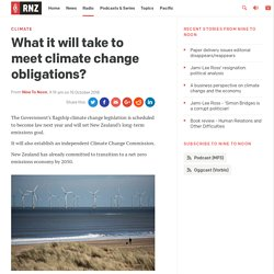 What it will take to meet climate change obligations?