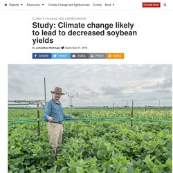 INVESTIGATE MIDWEST 21/09/16 Study: Climate change likely to lead to decreased soybean yields