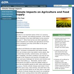 "[section ""Impact on Crops""] Climate Change causing higher temperatures, higher levels of carbon dioxide, and higher frequency of extreme weather has a negative impact on crop yield."