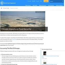 Climate Impacts on Food Security