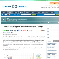 Climate Change Impacts in Pictures: 8 Stark IPCC Images
