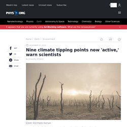Nine climate tipping points now 'active,' warn scientists