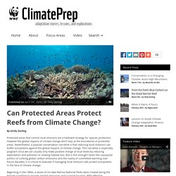 ClimatePrep » Can Protected Areas Protect Reefs from Climate Change?
