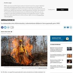 El cambio climático avivará los incendios en la selva amazónica