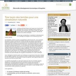 Tirer leçon des termites pour une climatisation naturelle