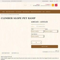 Climber Slope Pet Ramp