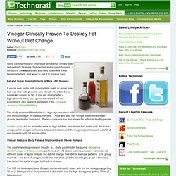 Vinegar Clinically Proven To Destroy Fat Without Diet Change - Techn...